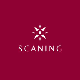 Logo Scaning